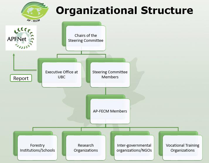 AP-FECM structure